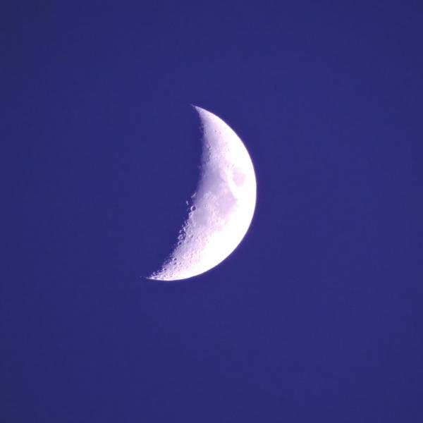 Mitja lluna